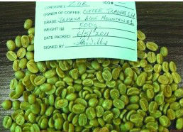 Anti-cancer:Green Coffee Bean Extract/Sources: Coffea arabica