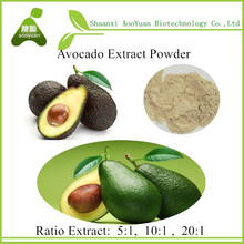 100% Natural Avocado extract / Best price Butter fruit extarct powder 10:1 / Persea americana