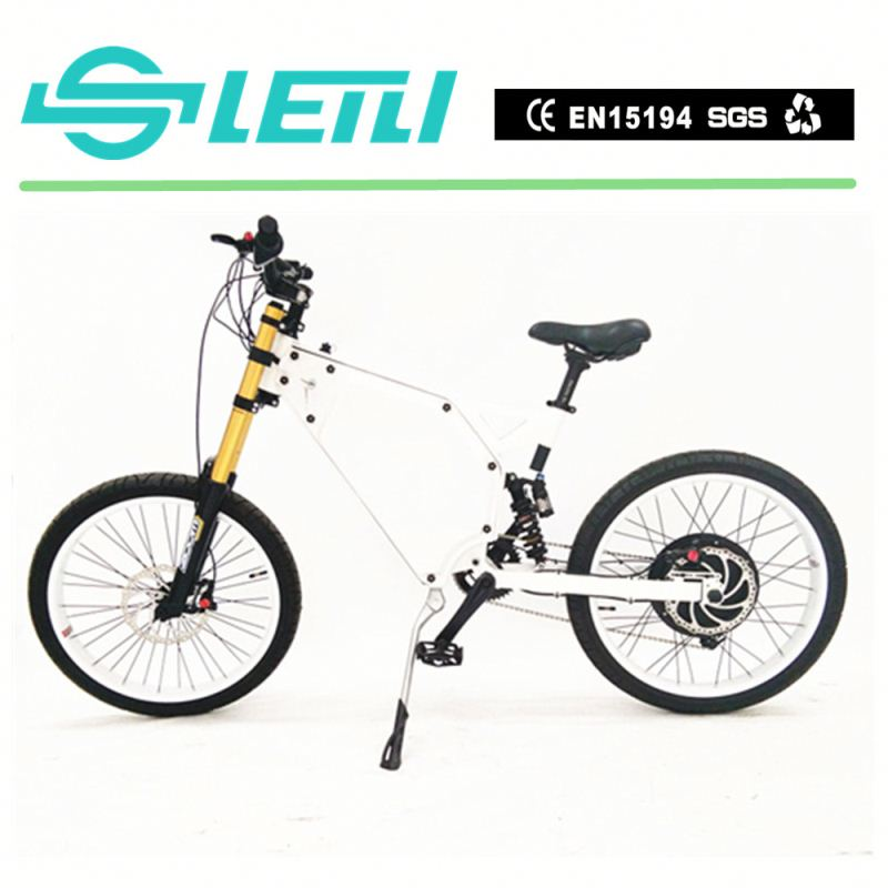 20 Inch Electric Bike/ Ebike/ Electric Bicycle/Snow Ebike