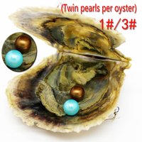 Free Shipping Love Twins Pearls Oysters 6-7mm Natural AAAA Round Pearl Oysters & Vacuum Pack Party