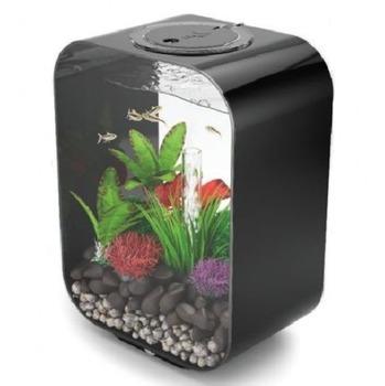 Mini Black Small Acrylic Fish Tank Buy Mini Black Small