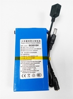 Factory supply DC0512V 12V 6800mAh & 5V 13000mAh Polymer Li-ion rechargeable scrap battery with DC 5V USB output