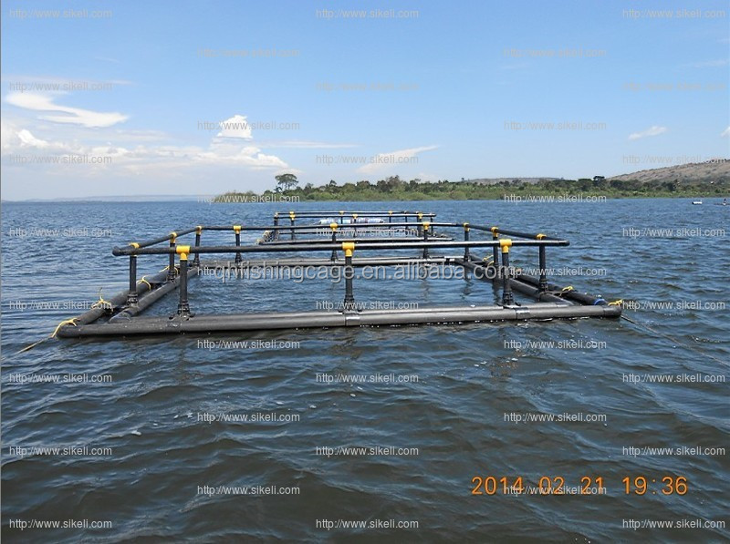 Volta Lake floating tilapia square cage