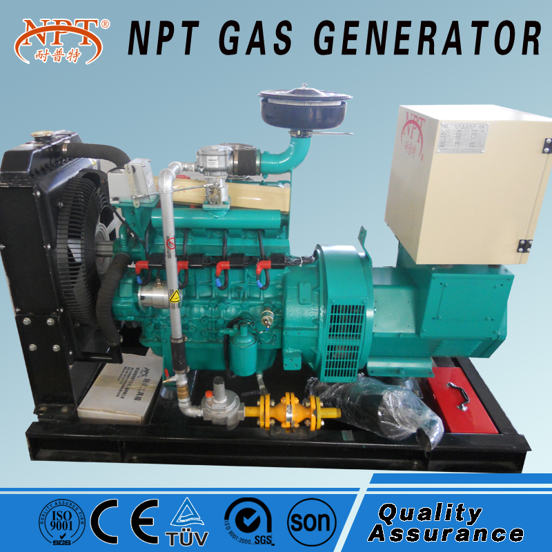Customized CE approved 25KW biogas electricity generator india