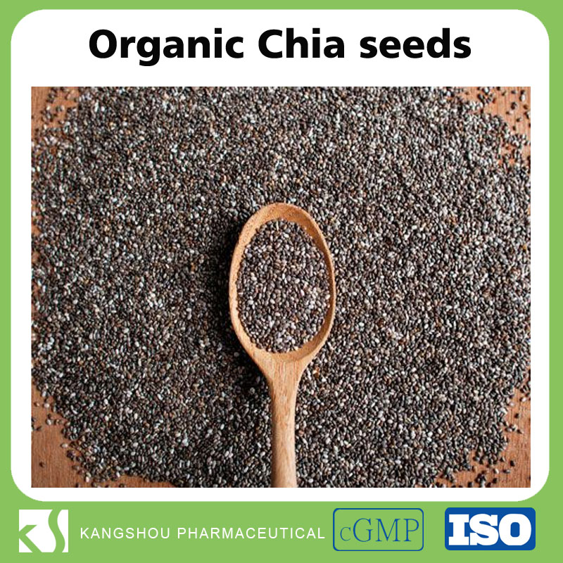 High quality Organic chia seeds mexico bulk chia seeds for sale