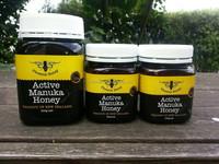 Active Manuka Honey 25+ 500grams