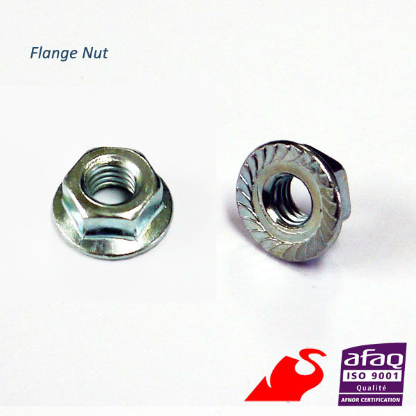 FLANGED NUT M10 x 1.25 PK20