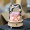 pink eucalyptus rose in glass dome