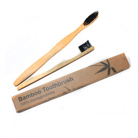 New products 2015 innovative 100% biodegradable sonic bamboo toothbrush
