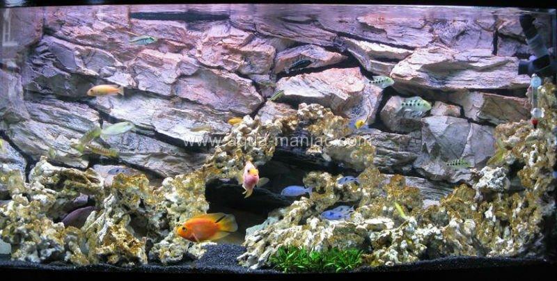 aquarium fond r el 3d sans mousse r servoirs de poissons accessoires id du produit 122001425. Black Bedroom Furniture Sets. Home Design Ideas