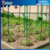 Hot sell bst selling fiberglass gardening fence, frp stake,plant support rod