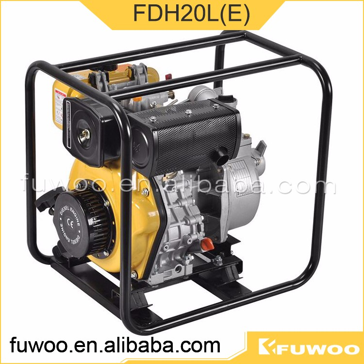High Quality Fdh20l(e) Pumps Electric Water Pump Italy Manufacture