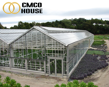 Cheap Polycarbonate Agricultural Greenhouse,Low Cost Tunnel Plastic  Greenhouse For Sale - Buy Tunnel Plastic Greenhouse Film  Agriculture,Greenhouses