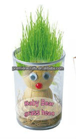 Growing grass head doll in a can