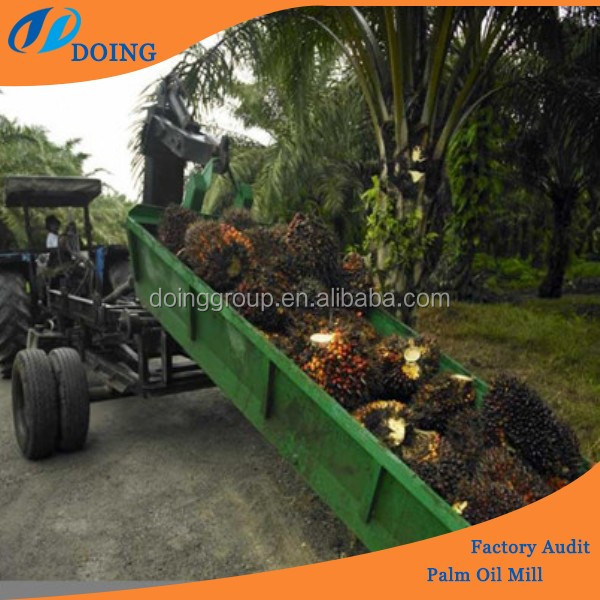 Palm fruit oil processing machine/palm oil mill plant from palm fruit to oil