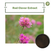 Factory supply Red Clover Flower Extract, Red Clover Flower P.E.