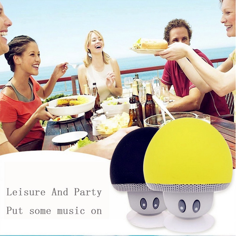 Mini Wireless Portable Speakers with Mic and Sucker Portable Small Stereo for Phones