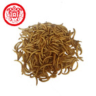Fish feed additives high protein aquarium fish food dried mealworm
