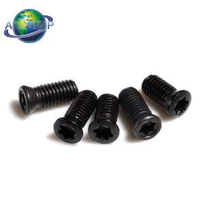 Carbide Insert Screws Torx Screws