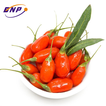 Wholesale healthy food organic goji berry certified bulk goji berry dried fruit plant extract