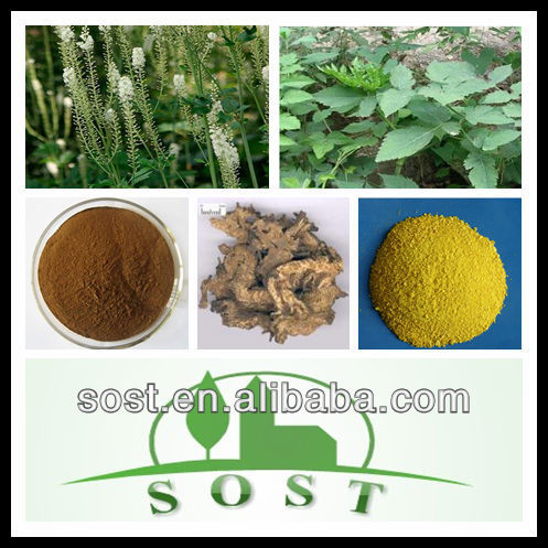 plant extract pure natural Black Cohosh Extract