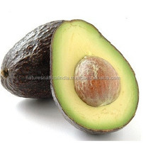 Avocado Oil Pure and Natural