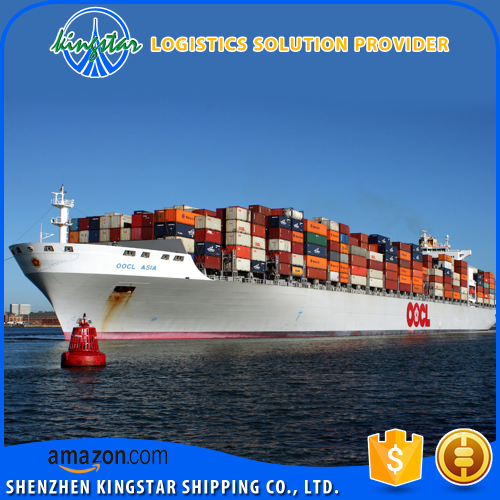 20GP/40GP/40HQ Container Shipping Ocean Freight from Shenzhen/Shanghai/Qingdao to Kawasaki Japan