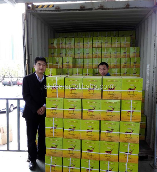 The koutam brand wholesale chunmee green tea supplied by tea manufacture-Huangshan songluo