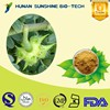 CAS 90131-68-3 UV Tested Saponins Tribulus Terrestris Powder for Muscle Growth