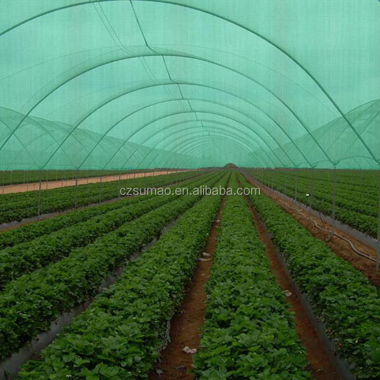 Durable Cheapest agricultural shade net with rings