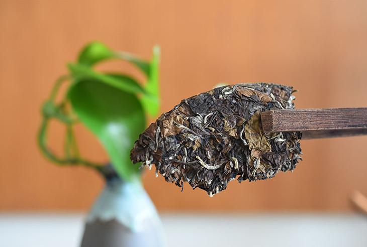 Fermented Hand Made Fat Needle Shape Health Organic Shoumei Chinese White Tea - 4uTea | 4uTea.com