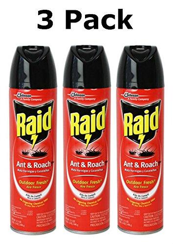 Roach Spray Outdoor Fresh Scent