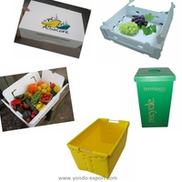 Recyclable corrugated plastic box / corflute box