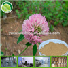women health supplement Red Clover Extract /Trifolium pretense extract powder/Red Clove PE /isoflavone 2.5%, 8%, 20%,40% UV