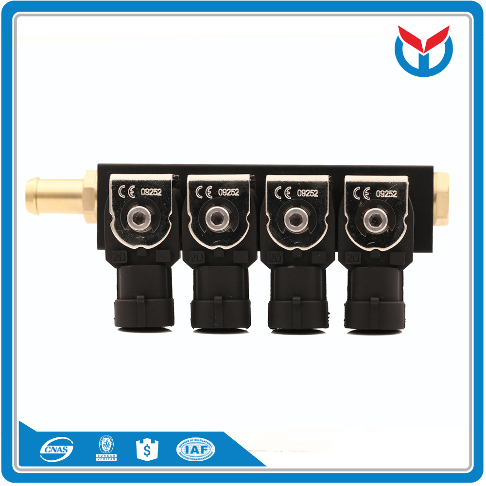 cng lpg injector (10)