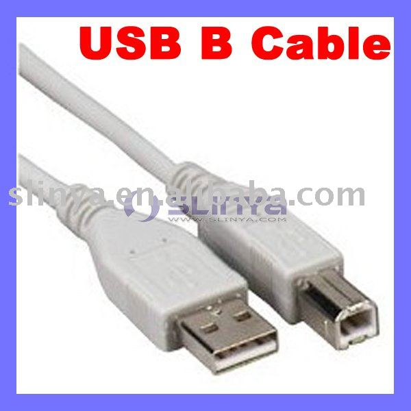 Computer USB A B USB Male Cable Printer Connector for HP / Canon