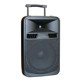 CQA full frequency PA sound system speaker club theater pc speaker