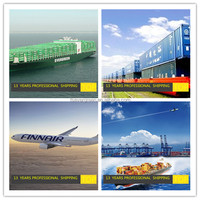 global logistic sea freight/ air freight service freight forwarder /DHL ups express