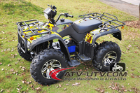 Factory prices adult newly personal electric quad bike