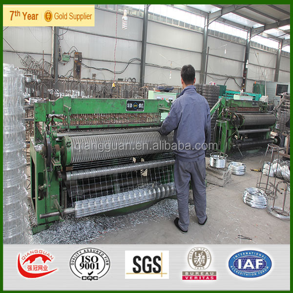 Galvanized/pvc Coated Welded Wire Mesh,Iso9001 Anping Factory - Buy ...