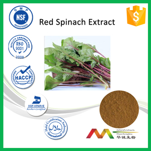 NSF-cGMP Natural Free Sample Red Spinach Extract