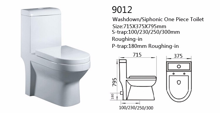 Nice Washdown Floor Mounted Wc Toilet , Chemical Toilet For Home Sale
