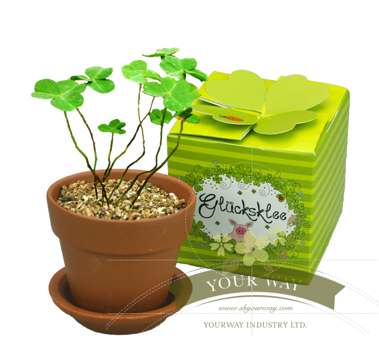 Mini luckyflower com displaybox