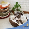 2017 New style top quality plush pet dog bed for small cat and dog