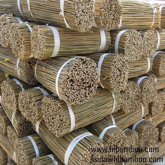 Natural tonkin bamboo stakes