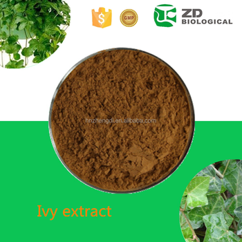 100% Pure Natural Herbal Medicine Ivy Leaf Extract - Buy Ivy Leaf  Extract,Herbal Medicine Ivy Leaf Extract,100% Pure Natrue English Ivy Leaf  Extract
