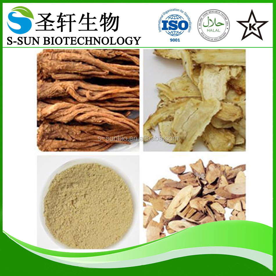 Natural Angelica Sinensis Root Extract/chinese Angelica