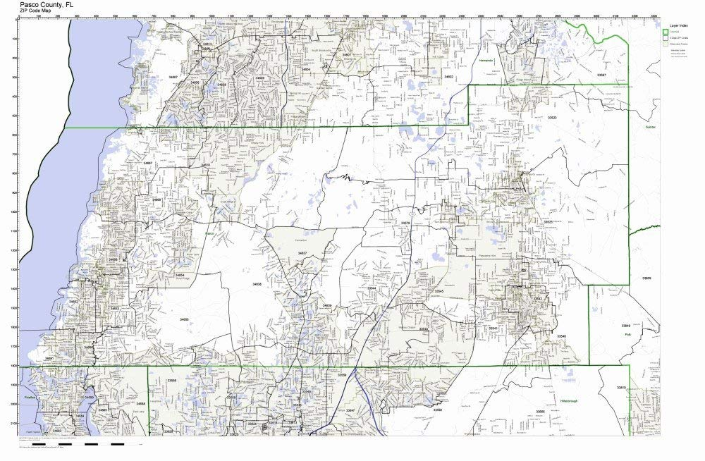 Pasco County Florida Map.Buy Highlands County Florida Fl Zip Code Map Not Laminated In Cheap