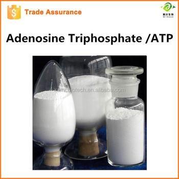 china supplier supply USP Standard Adenosine triphosphate ATP Powder