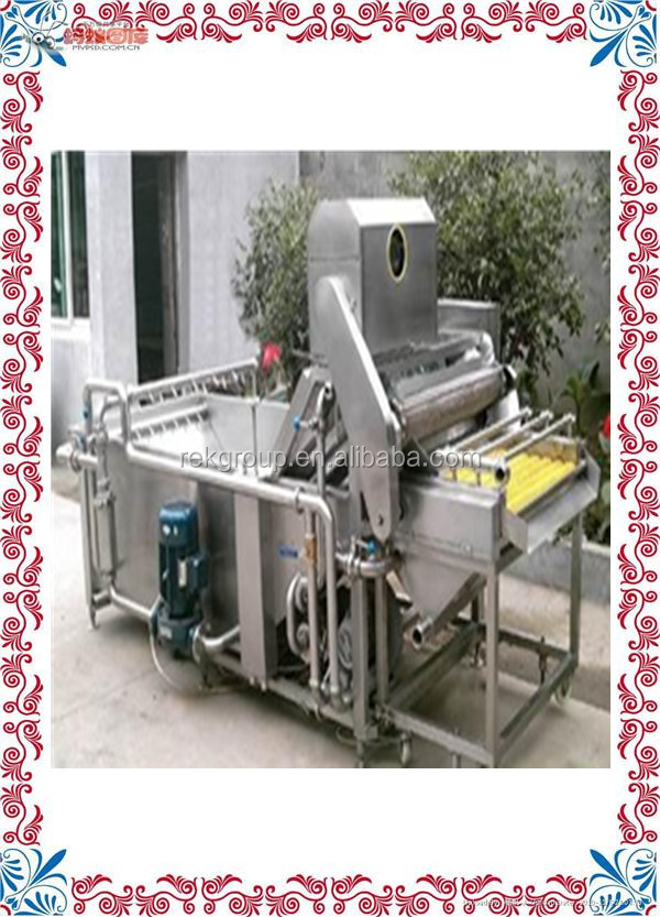 Patented Best saler fruit and vegetable washer machine for sale with CE approved